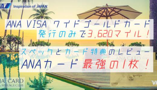 ANA VISAワイドゴールドカード詳細レビュー│年会費・還元率・キャンペーン